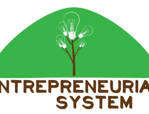 اهمیت سیستم سازی در کارآفرینی
